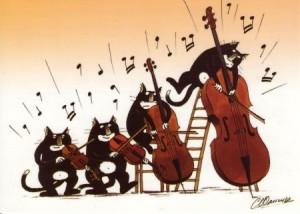 musique de chambre chats